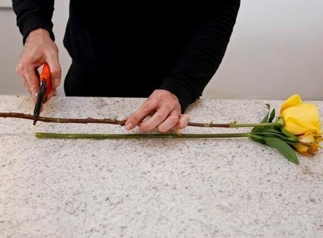 passo-a-passo-arranjo-de-flores-para-o-dia-das-maes-2012-1336435298753_956x500