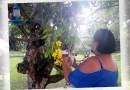 """Árvore de Deus"": Fotógrafa Roberta Simões enfrenta a pandemia cuidando de centenas de pássaros"