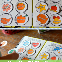Months Of The Year Preschool/Kindergarten and First Grade File Folder Activities