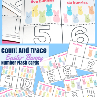 Count And Trace Easter Bunny Number Flash Cards #Free Printable