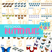 Preschool Butterflies Count And Trace Flash Cards 1-20