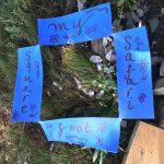Make It Together: Square-Foot Safari