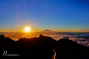 Sunrise over mt Adams from St Helens