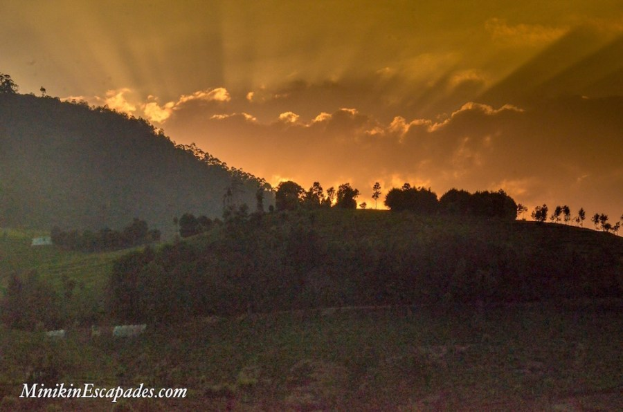 Sunset in the hills of Ooty