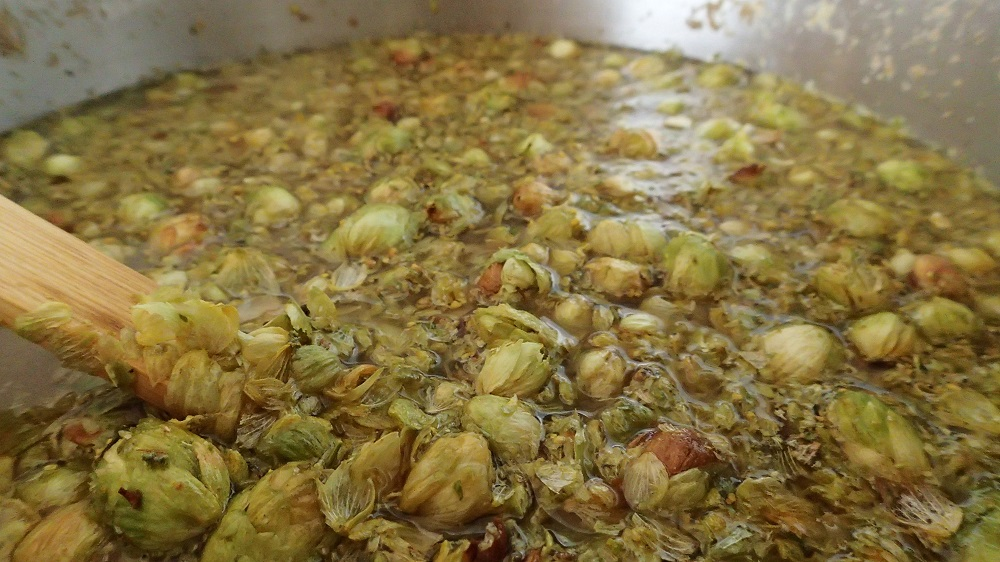 Pale Ale wort at the buttering hops stage