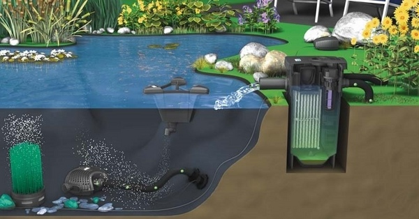 Diy small koi pond filter diy koi pond related keywords for Koi pond filter system design