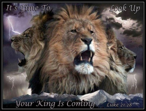Lion Heart Of Judah The Messiah Jesus Yeshua Hamashiach Mini Manna