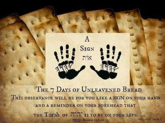 Unleavened Bread Of Matzot Week Where We Are And What It Means As