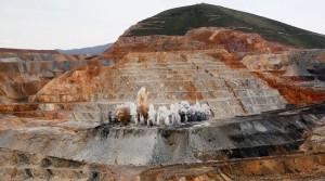 World's top 10 gold mining companies – 2016