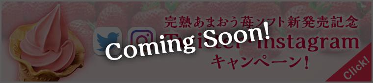 完熟あまおう苺ソフト新発売記念 Twitter・Instagramキャンペーン!