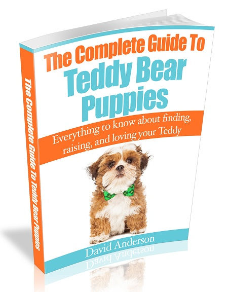 The Complete Guide To Teddy Bear Puppies E-Book!