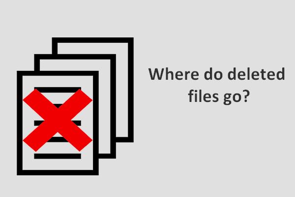 para onde vão os arquivos apagados em miniatura