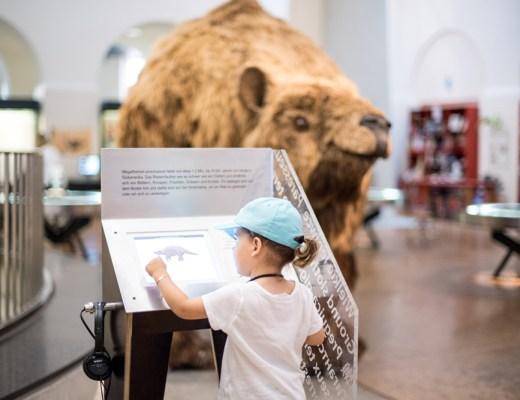 Ausflugstipps für Familien im Raum Zürich. Hier: Im Zoologischen Museum