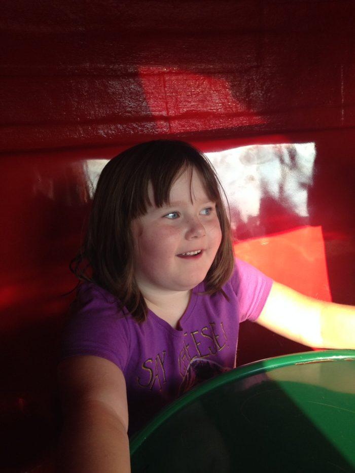2014 County Fair | Mini Van Dreams #lifewithtwins #familymemories