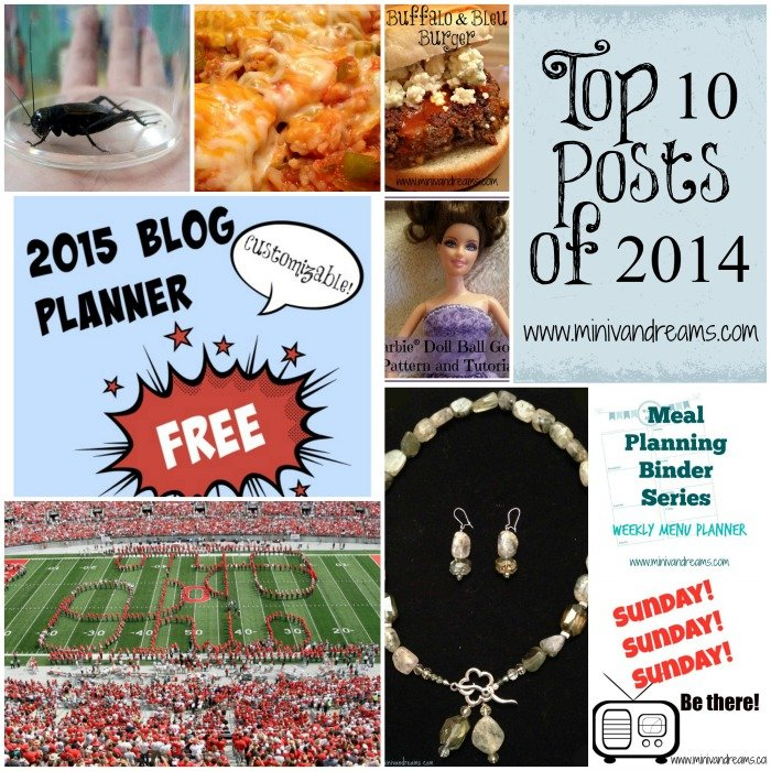 Top 10 Posts of 2014 at Mini Van Dreams!  Come check it out!