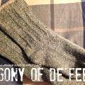 Agony of De'Feet | Mini Van Dreams