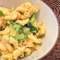 Easy Cheesy Chicken Broccoli Pasta | MIni Van Dreams