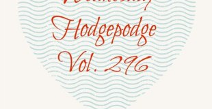 Wednesday Hodgepodge Vol. 296