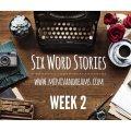Six Word Stories: Week 2 Recap   Mini Van Dreams