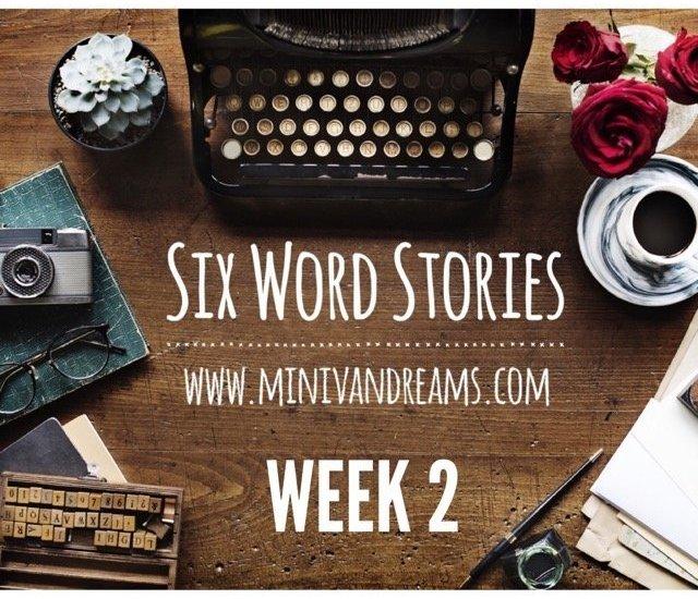 Six Word Stories: Week 2 Recap | Mini Van Dreams