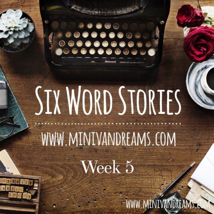 Six Word Stories Week 5 Recap   Mini Van Dreams
