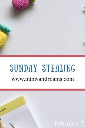 Sunday Stealing: February 3, 2019 | Mini Van Dreams