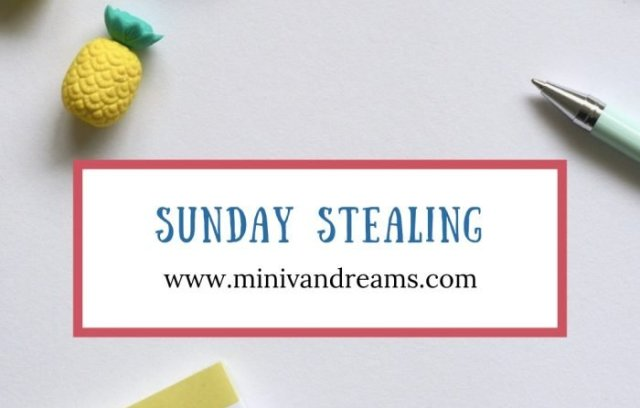 Sunday Stealing: February 3, 2019 | Mini Van Dreams