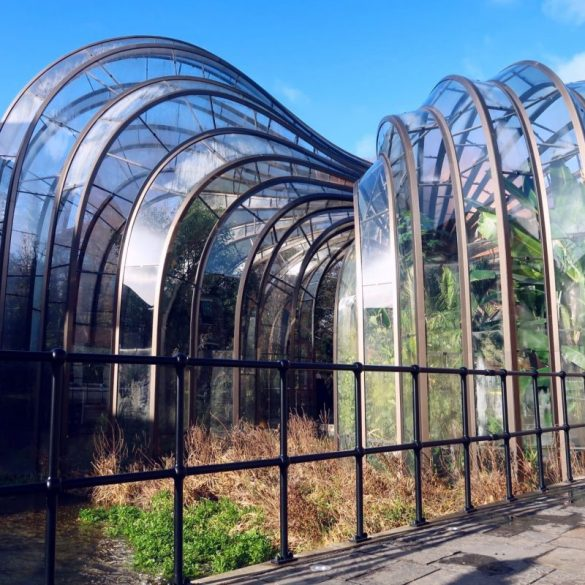 Bombay Sapphire Distillery tour @minkaguides Glasshouses greenhouses