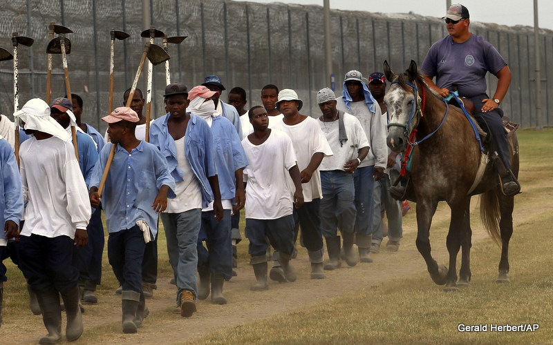 A prison guard on horseback watches inmates return from a farm work detail at the Louisiana State Penitentiary in Angola, La.