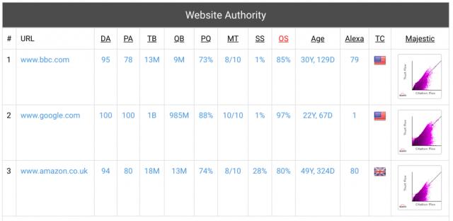 screenshot of website authority from website seo checker