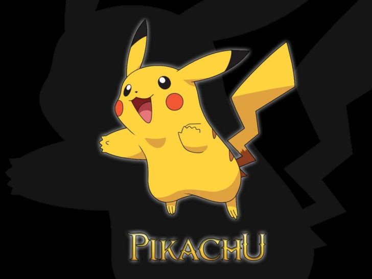Pikachu Pokemon