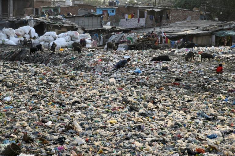 Un chiffonier dans un canal d'évacuation des égoûts rempli de déchets plastiques dans le bidonville Taimur Nagar à New Delhi le 30 mai 2018