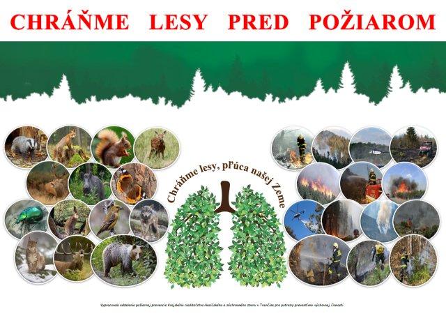 Plagát A3 - Lesy 2021