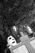 halloween-abobora_slipknot