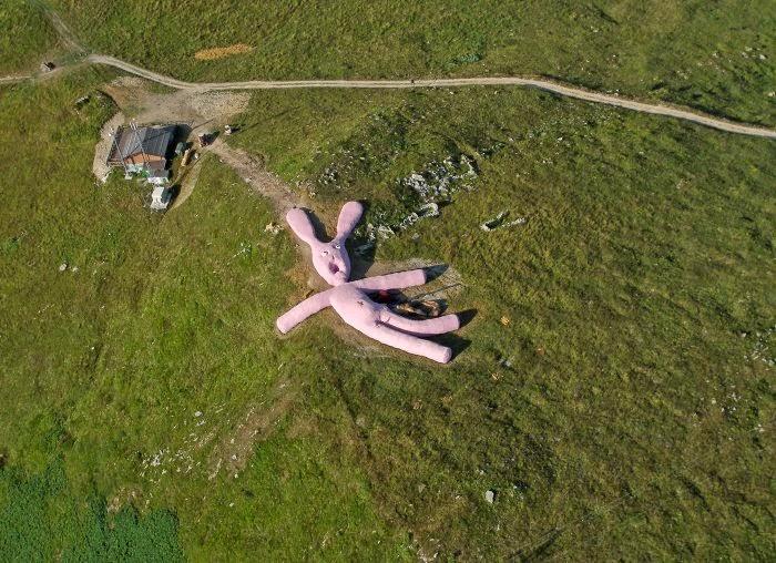 Hola, qué Hase? Un conejo rosa gigante en Italia