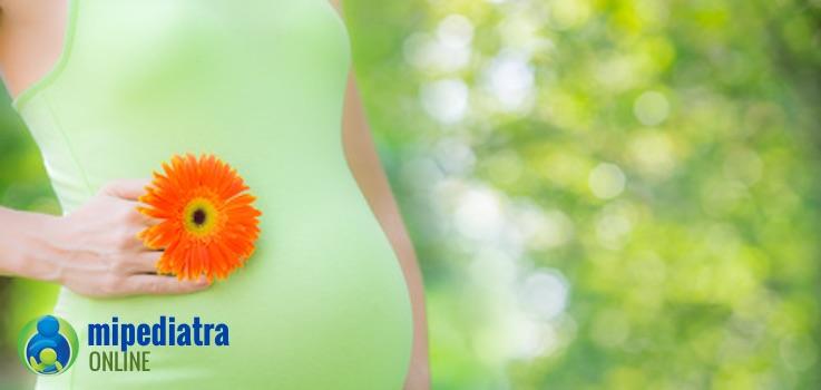 ¿Cuáles son los principales cambios de las mamas en el embarazo?