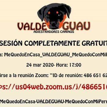 Sesión gratuita online » MeQuedoEnCasa-MeQuedoConMiPerro»