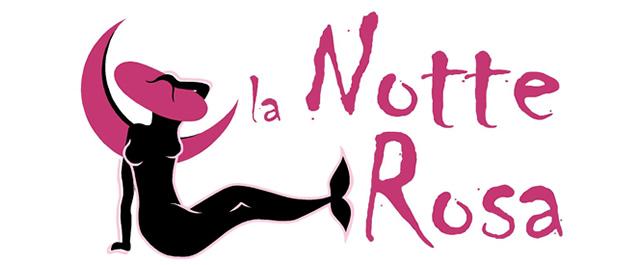 notte-rosa-2010-mirabilandia