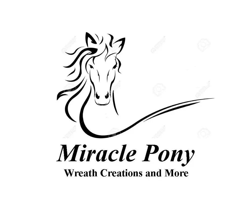 Miraclepony