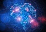 Google RankBrain: O que é e como ele pode impactar o SEO
