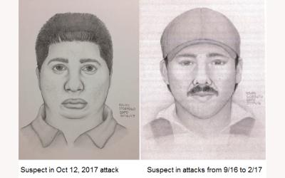 Help Identify Mira Mesa Groper