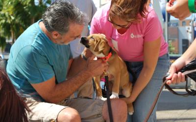 Pet Outreach Event August 11, 2018