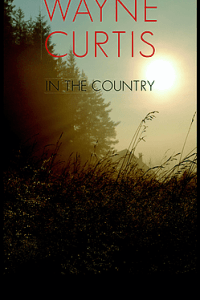 In the Country by Wayne Curtis