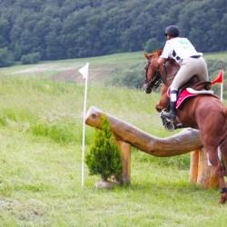 Program Transylvania Horse Show: Sambata