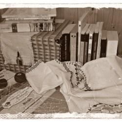 Sezatoare printre carti la Biblioteca Medias