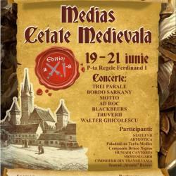 "Festivalul ""Medias Cetate Medievala - targ de mestesuguri vii"", editia a XI-a"