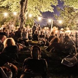 Arini Fest Cinema, editia 2015