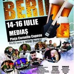 Festivalul Berii, Medias 2017