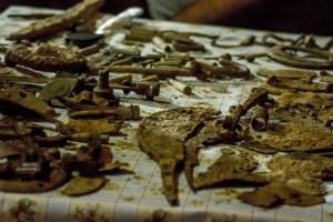 Vestigii istorice descoperite pe Valea Trotusului