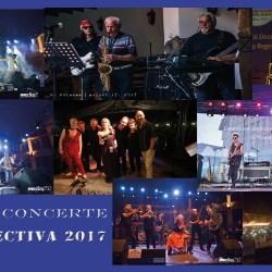 Retrospectiva 2017: Concerte